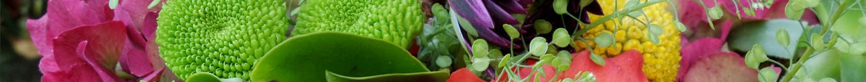 Someflower - Mini Slider 1