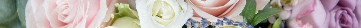 Flower Banner for Summer Gallery