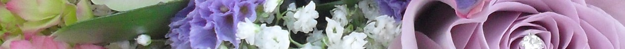 Consultation Info Flower Banner